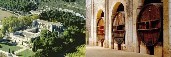 winery-south-of-france-3