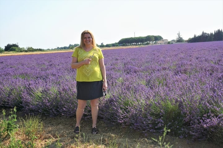Lavender Field South of France