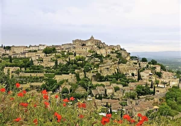 special lavender south of france tour (3)