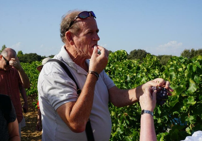 Southern France Small Group Tour (24)