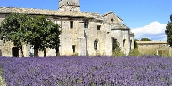 9 day south of france tour van gogh lavender