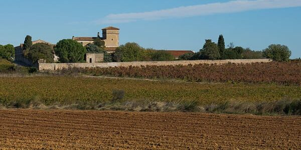 Winery South of France tour